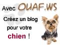 Ouaf.ws un blog pour votre chien star !