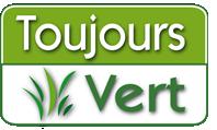 Toujours Vert: le Spécialiste du Gazon synthetique