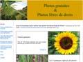 Photos gratuites et photos microstock libres de droits