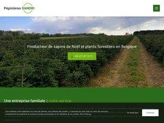 Producteur de sapins de Noël et plants forestiers en Belgique