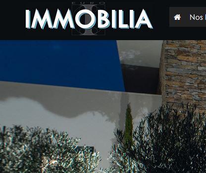 www.euro-immobilia.fr