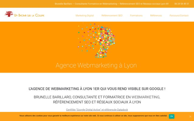 Agence Digitale Lyon Un Baobab sur la Colline